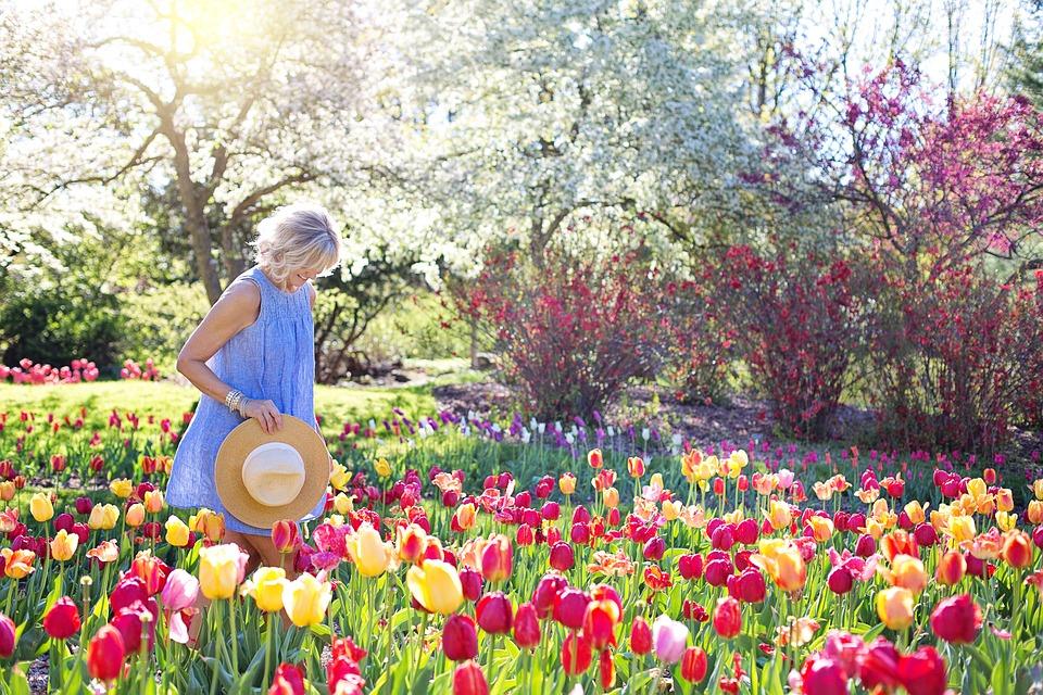 Les professionnels du jardinage : comment les choisir ?